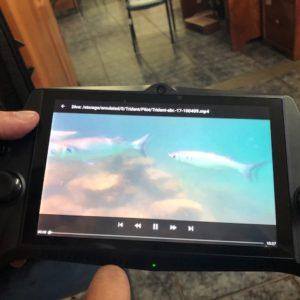 Se entrena funcionario de la DPNG para uso de  dron marino