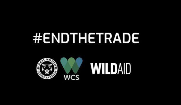 Únete a la Coalición para poner fin al comercio de vida silvestre